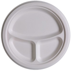 Eco Friendly 3 Compartment Plate 10